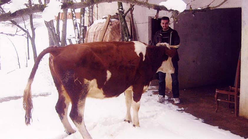 Nikola from Kosovo: Production of milk